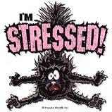 Custom Heat Transfer - I'm Stressed - Cat 10x11