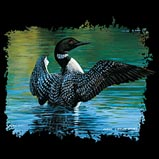 Custom Heat Transfer - Loon Stretching Out 11x12