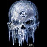 Custom Heat Transfer - Ice Skull 12x12