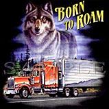 Custom Heat Transfer - Born To Roam 14x14