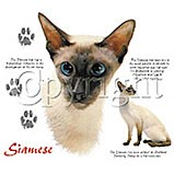 Custom Heat Transfer - Siamese Cat 12x14