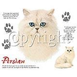 Custom Heat Transfer - Persian Cat 12x14