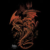Custom Heat Transfer - Storm Rider 15x15-dragon, storm rider, custom heat transfer, iron-on, iron on, custom t-shirt, t shirt, tees