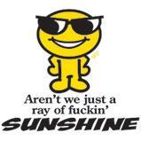 Custom Heat Transfer - Just a Ray of Sunshine 4x4.5