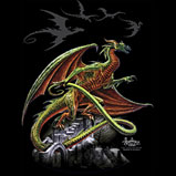 Custom Heat Transfer - Tailwind Dragon 12x12-dragon, custom heat transfer, iron-on, iron on, custom t-shirt, t shirt, tees